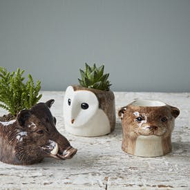 Hand Painted British Animal Egg Cups by Quail