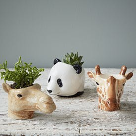 Hand Painted Wild Animal Egg Cups by Quail